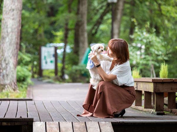 一緒に旅すれば、もっと好きになる。かわいい愛犬の意外なところを発見できるのも、旅の醍醐味です。
