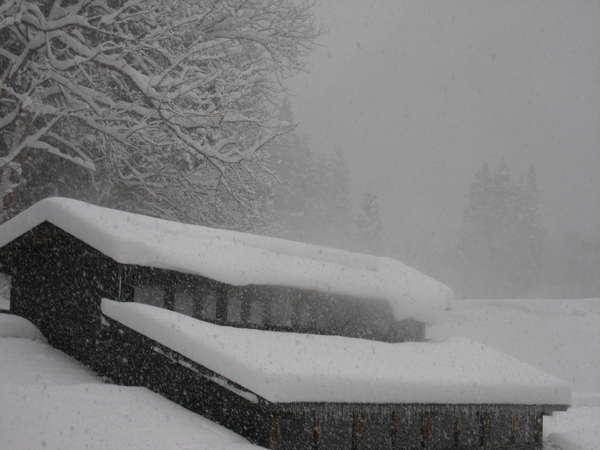 雪景色の中、ことさらに暖かさを感じさせてくれる、お風呂棟の湯気抜き。「ざぶんと暖まってくだいなし」