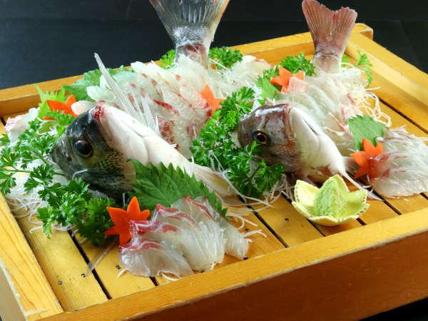 旬の魚の活き造り★新鮮な魚介をお楽しみ下さい♪