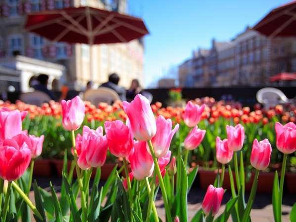ハウステンボスの春のシンボル!
