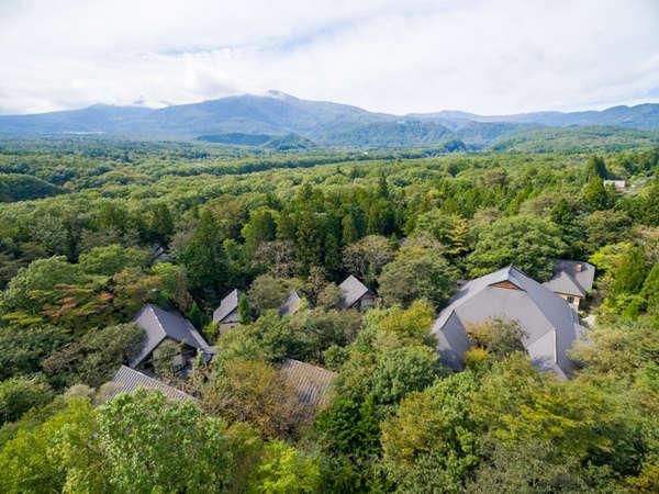 1万坪の自然林にゆったりと点在する施設