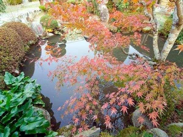 自慢の庭園は秋色に染まります