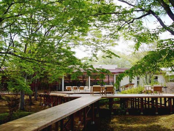 ◆天気の良い日は中庭で新緑を眺めながら過ごすのがおススメです!