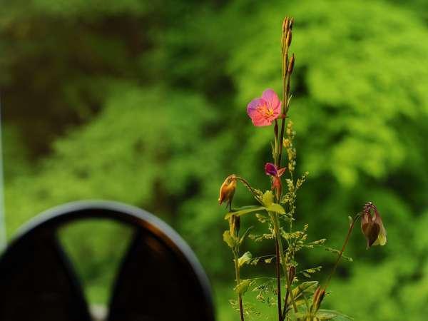 ■茶房『まゆの花』■チェックイン時間前の到着も安心。