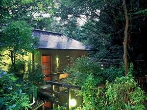宿泊棟のひとつ白翁棟。周りには自然の森が広がる