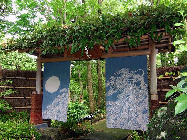 *森の大門。花吹雪の森への入り口です。