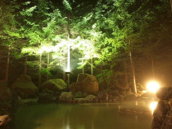 【露天風呂 男性】源泉掛け流し 天然保湿成分メタケイ酸が豊富な「美肌の湯」