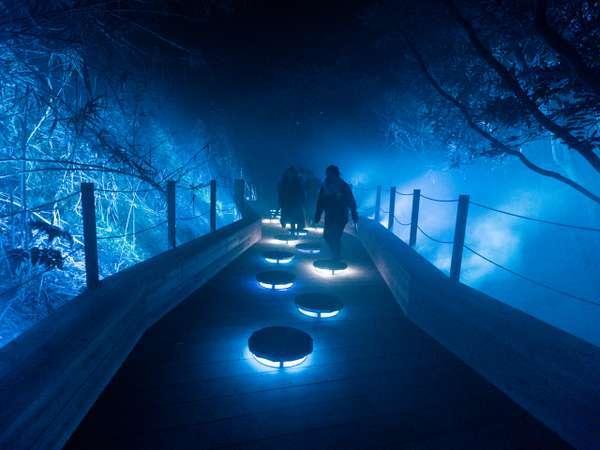 最先端技術の光と映像のデジタルアートが創る幻想の世界を冒険する『ISLAND LUMINA』