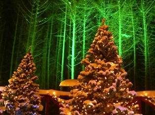 静かにホワイトクリスマス♪