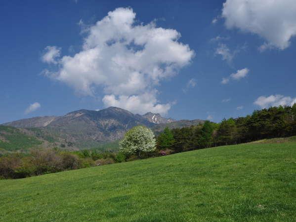 県営八ヶ岳牧場