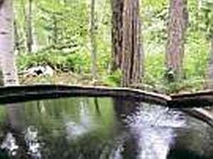 【ガストホフ ぱぴりお】屈斜路湖畔の森に湧く100%天然温泉!星降る夜の露天も人気
