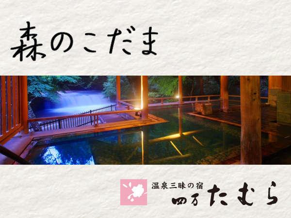 滝見の露天風呂「森のこだま」≫