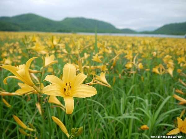 【帰郷のお宿 ふじや】会津喜多方 熱塩温泉は開湯650年の歴史あるしょっぱい天然温泉です