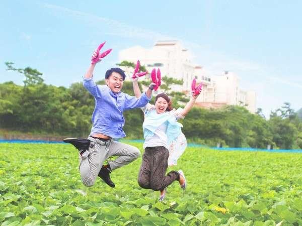 9月からは毎年4500人が参加する当館一番人気の『鳴門金時芋掘り体験』♪目の前の畑、スニーカーで楽々!