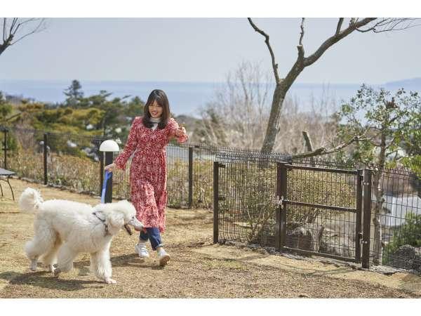 屋外愛犬コミュニティ広場:屋外に2ヶ所のコミュニティー広場をご用意!お友達との新たな出会いも!