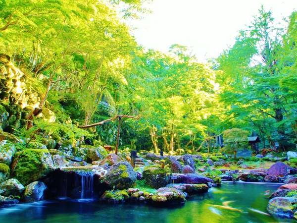 15000坪の壮大な深緑の庭園があなたを癒してくれる♪(深緑イメージ)