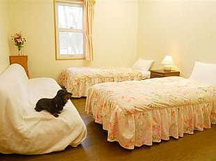ペットと一緒に過ごせる快適な客室