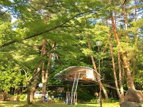 *新感覚ツリードーム「Dom'Up」沼沢湖キャンプ場に設置!当館からご予約可能です!