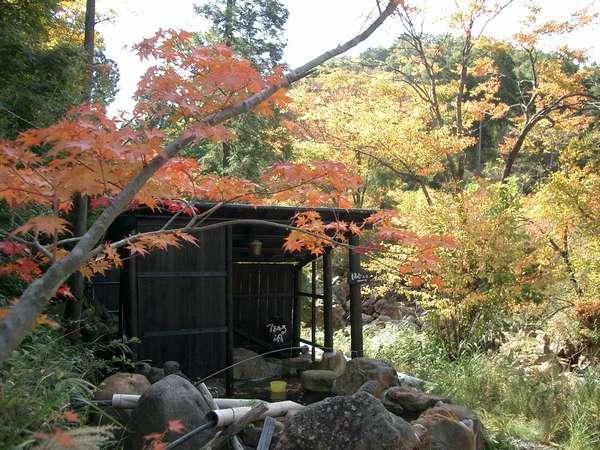 秋には紅葉を望む絶景の露天風呂