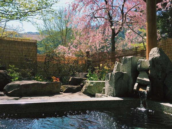 5月頃には枝垂れ桜を見ながらの温泉です。