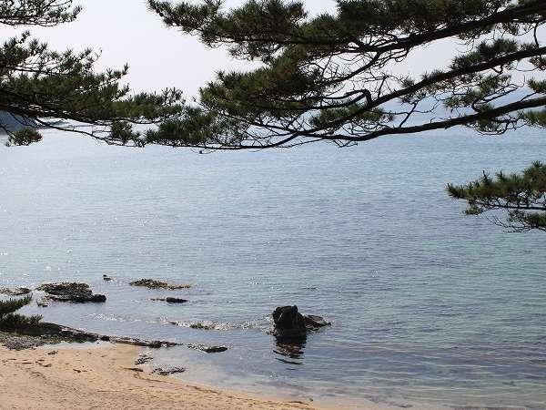 天然記念物にも指定される鳴き砂の琴引浜海岸。