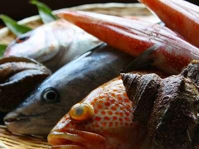 丹後の海の幸はどれも新鮮美味!