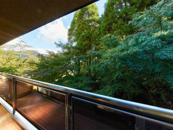 *[客室眺望一例]客室は、森林を間近に感じる癒しの空間♪