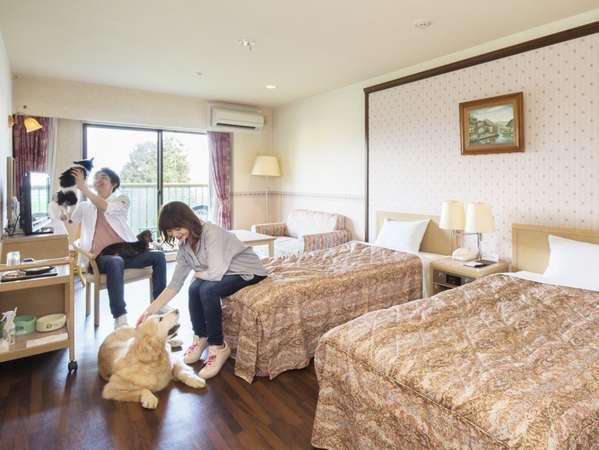 全客室わんちゃんOK!1室2頭目から宿泊料半額♪小型犬~超大型犬までお泊りいただけます。