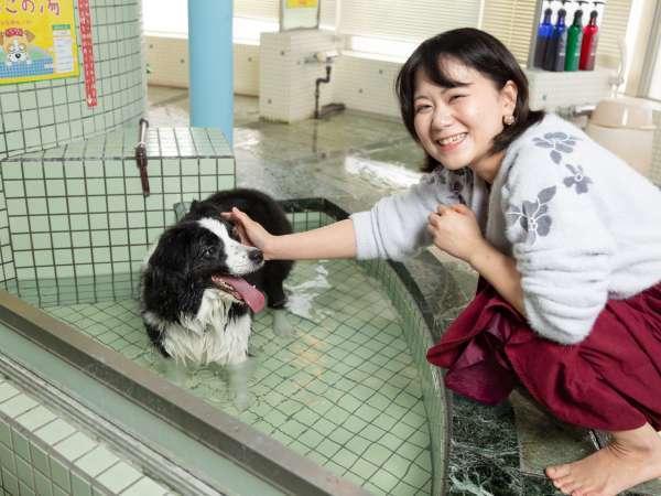 【わんちゃんと入れる貸切風呂】人気なので事前予約がオススメ!1時間3,000円(税別)