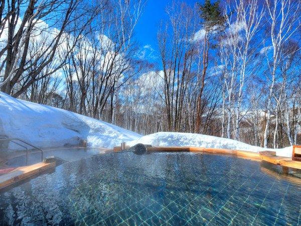白樺の湯 冬 白樺と森の緑の美しいコントラスト。森林浴によるリラックス効果がも期待できます。