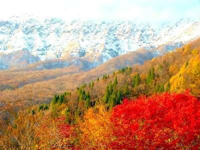 麗しの大山