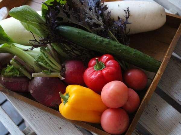 那須の地野菜をご堪能ください