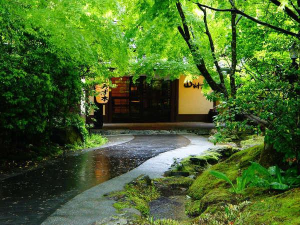 【玄関】新緑の季節