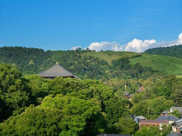 当館からの景色、夏の東大寺・若草山