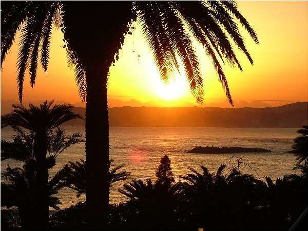 【鴨川ヒルズリゾートホテル】全室オーシャンビューのホテルで海の幸たっぷりの夕食を召し上がれ
