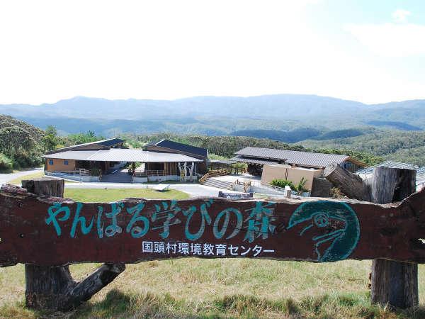*【外観】やんばるの雄大な森に囲まれた宿泊施設です。