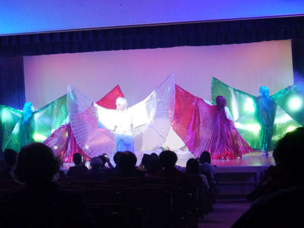 【舞踊ショー】昼の部・夜の部と両方楽しめる舞踊ショー!劇団員の華麗なるショーをお楽しみ下さい。