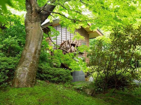 【水車小屋】カタンコトンと水車小屋の優しい音色がお出迎えします。
