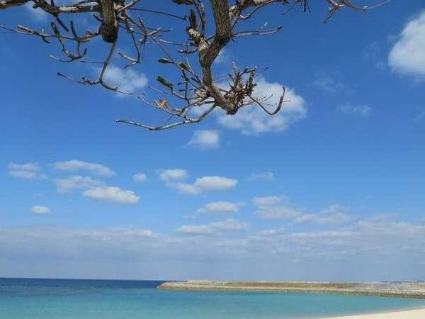 ベースサイドインから車約5分のトロピカルビーチ!晴れた日の海と空が綺麗です。