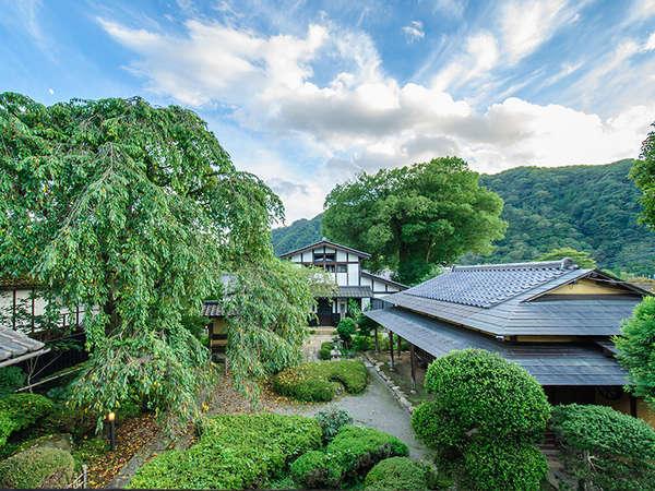 丸一本館庭園風景