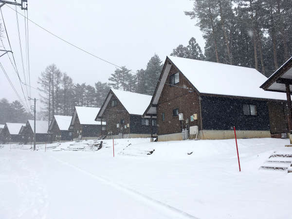 冬は雪で一面銀世界。