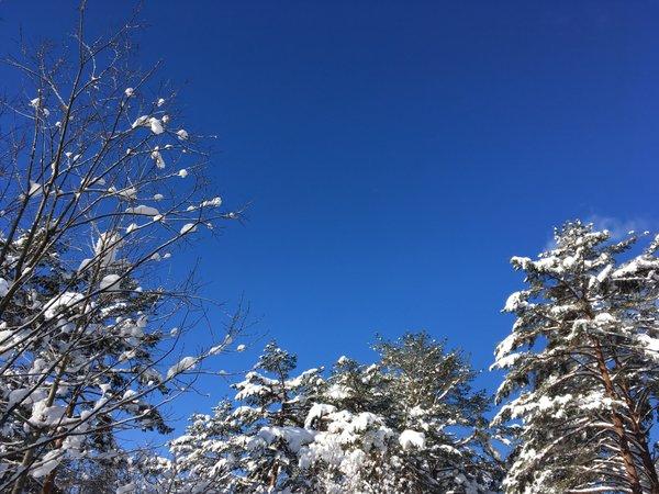冬は澄んだ空気に雪景色。