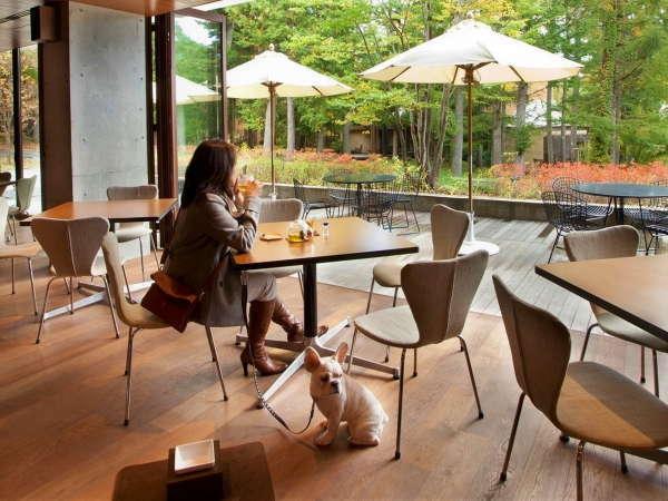 【カフェ・バー】愛犬同伴でご利用可能。愛犬と一緒にバーでお酒が飲める非日常な体験を