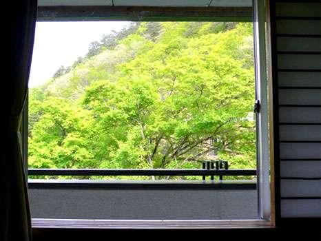 お部屋の窓からは、移り行く四季の風情をお楽しみいただけます。