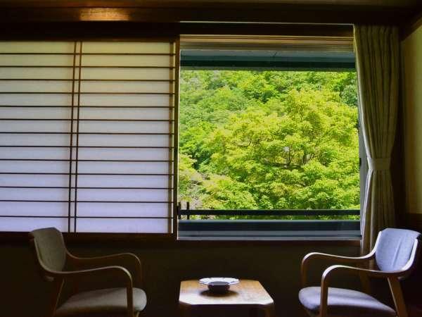 【眺望】客室から眺める山の緑