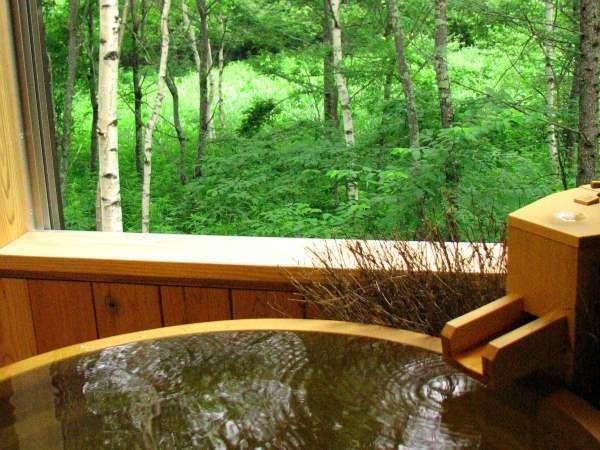 【客室風呂】半露天風呂付き客室の客室風呂の一例(新緑イメージ)