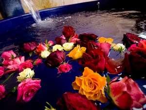 期間限定で貸切露天風呂に薔薇を浮かべての入浴も可能(オプション:期間についてはお問い合わせください)