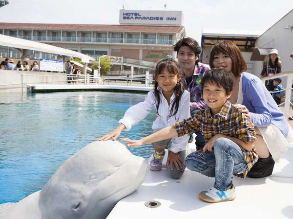 水族館「ふれあいラグーン」はホテルの目の前♪(有料プログラム「シロイルカのおでこにタッチ」の様子!)