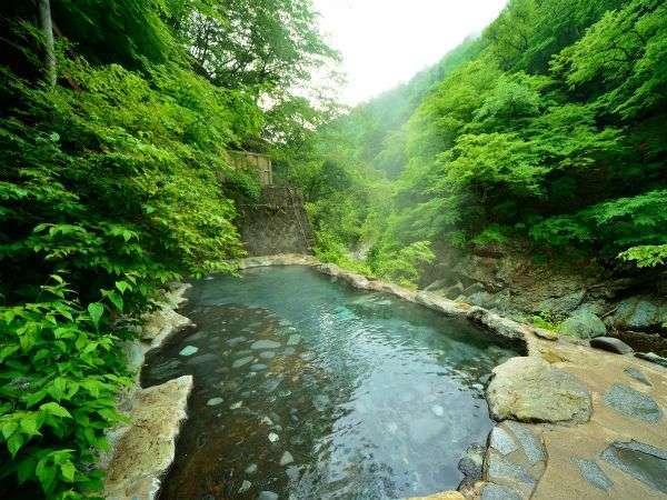 当館自慢の野天風呂は源泉掛け流し〈混浴〉渓流沿いにあり、他にはないここだけの温泉をお楽しみ下さい。