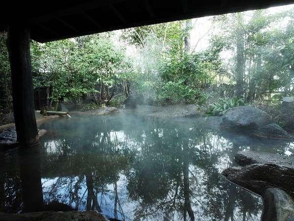 【大浴場】木々から射し込む光が幻想的な風景に。朝がオススメです